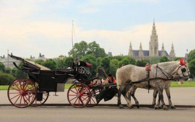 Екскурзия до Виена | без нощни преходи | 4 включени вечери