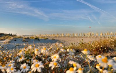 Почивка в Сардиния | All Inclusive Soft | 4 или 7 нощувки | чартър